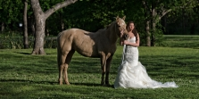 Bridal Portraits with a Horse Dallas Fort Worth Mansfield