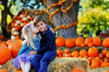 The Dallas Arboretum Limited Edition Pumpkin Patch Event