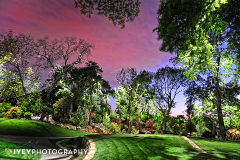 Dallas Arboretum Preferred Vendor Open House Wedding Photography