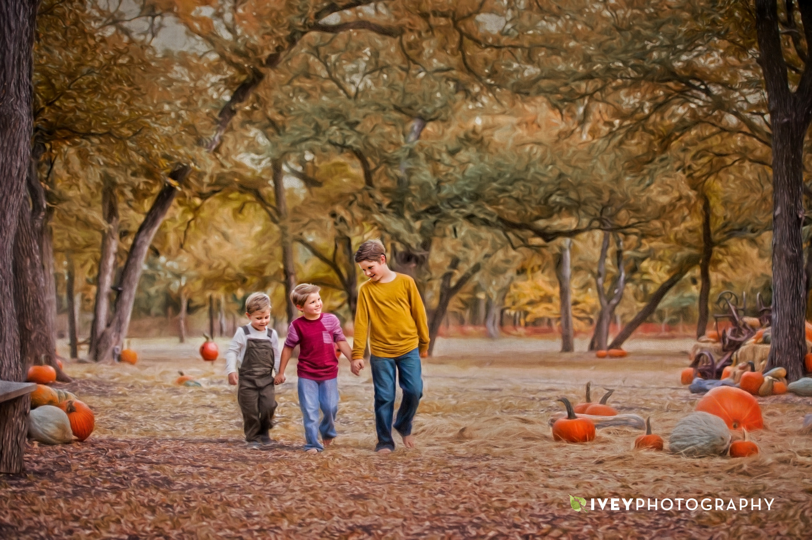 Shadow Creek Pumpkin Farm Photos by Ivey Photography